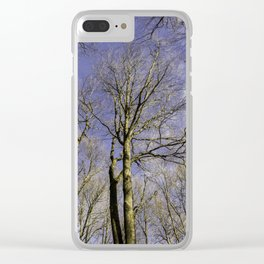 NATURE SINCE 1995 Clear iPhone Case
