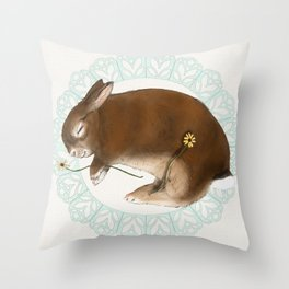 Sleeping Bunny in Baby Blue Lace Wreath Throw Pillow