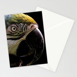Macaw | Wildlife Photography | Birds Stationery Cards
