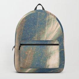 Ars Longa, Vita Brevis Backpack