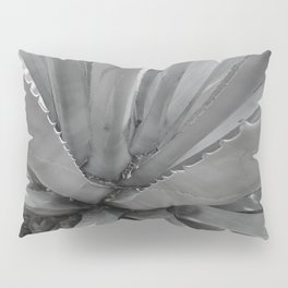 Agave Cactus, warm day, Pillow Sham