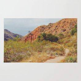 Sandy Trail Rug