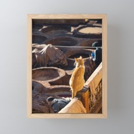Cat watching over the tanneries in Fez | Morocco travel photography Framed Mini Art Print