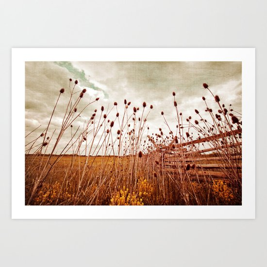Scattered Thoughts of Yesteryear Art Print