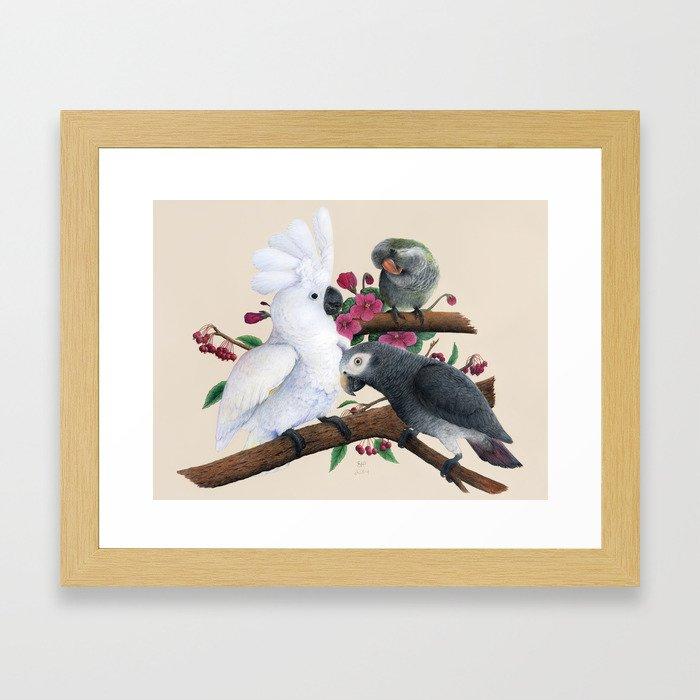 Fluffer, Congo and Charlie Framed Art Print