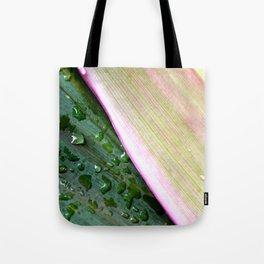 Organic Ombre Tote Bag