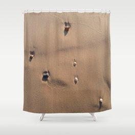 Oceanic pebble 2 Shower Curtain