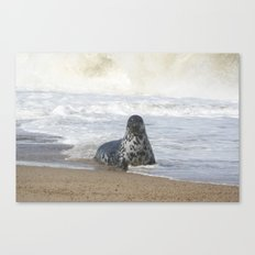 Come swim with me  Canvas Print