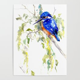 Kingfisher on the Tree Poster