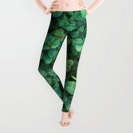 Lucky Green Clovers, St Patricks Day pattern Leggings