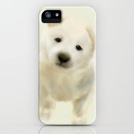 Jindo puppy iPhone Case