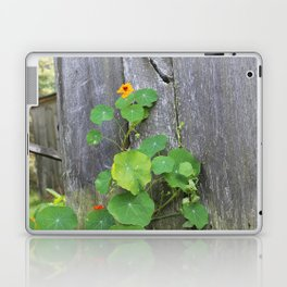 The Garden Wall Laptop & iPad Skin