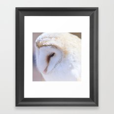Sleepy Owl Framed Art Print
