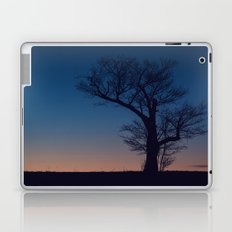 Fading Twilight Laptop & iPad Skin