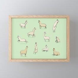Llamas Framed Mini Art Print