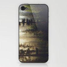 Sunrise Forest iPhone & iPod Skin