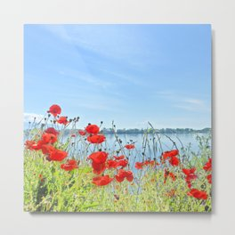 Red poppies in the lakeshore Metal Print