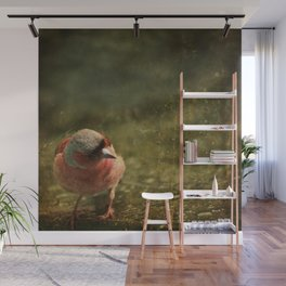 common chaffinch Wall Mural