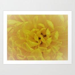 Misty Flower Art Print