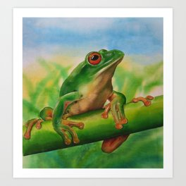Green Treefrog Art Print
