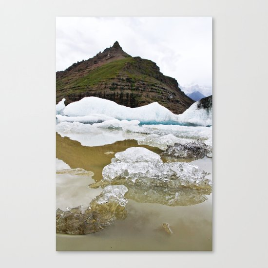with a side of ice. Canvas Print