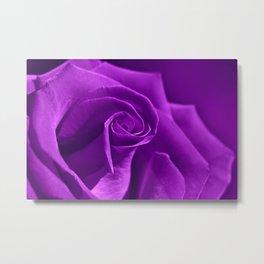 Rose 114 Metal Print