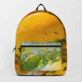 Twisted Squash Backpack