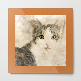 Catty Cat Metal Print