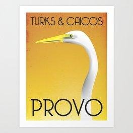 Turks Crane Art Print