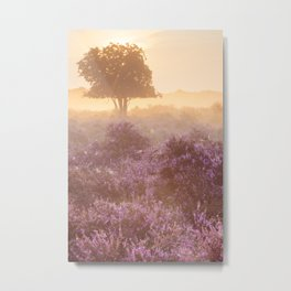 II - Fog over blooming heather near Hilversum, The Netherlands at sunrise Metal Print