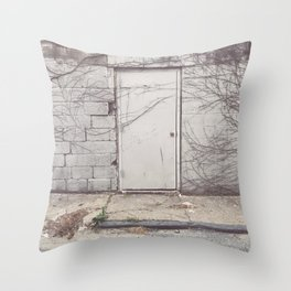 a door Throw Pillow