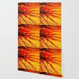 Orange Firethorn by Chris Sparks Wallpaper