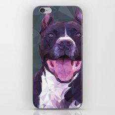 Boss Dog iPhone & iPod Skin
