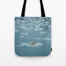 Sea lion on iceberg Tote Bag