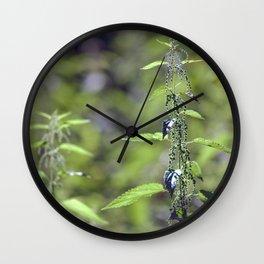 Stinging Nettle 5288 Wall Clock