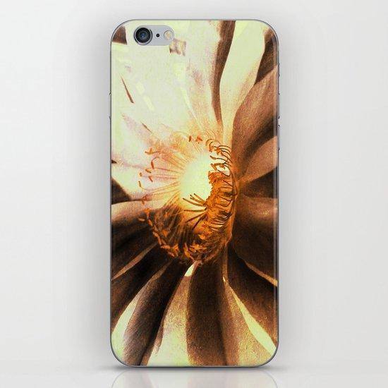 Kaktus Flower iPhone & iPod Skin