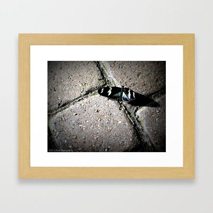 Butterfly Shadow Framed Art Print