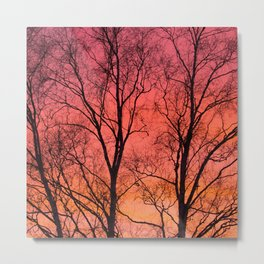 Tree Silhouttes Against The Sunset Sky #decor #society6 #homedecor Metal Print
