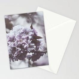 Beautiful View Stationery Cards