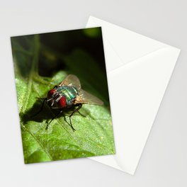 But A Fly Stationery Cards