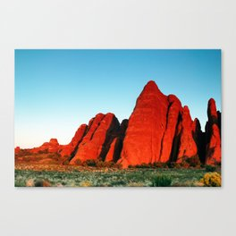 Red Fins Canvas Print