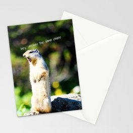 Angry Squirrel Stationery Cards