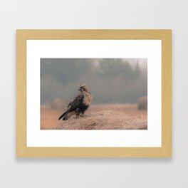Feathered Wanderer Framed Art Print