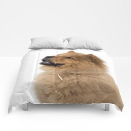 Chow Chow other profile Comforters