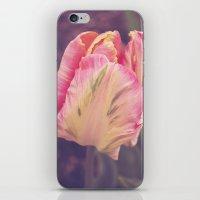 blush iPhone & iPod Skins featuring Blush by Strange Charm