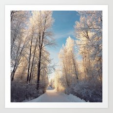 Let There Be Light - Frost Trees in Winter Art Print