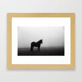 Horse in The Fog Framed Art Print