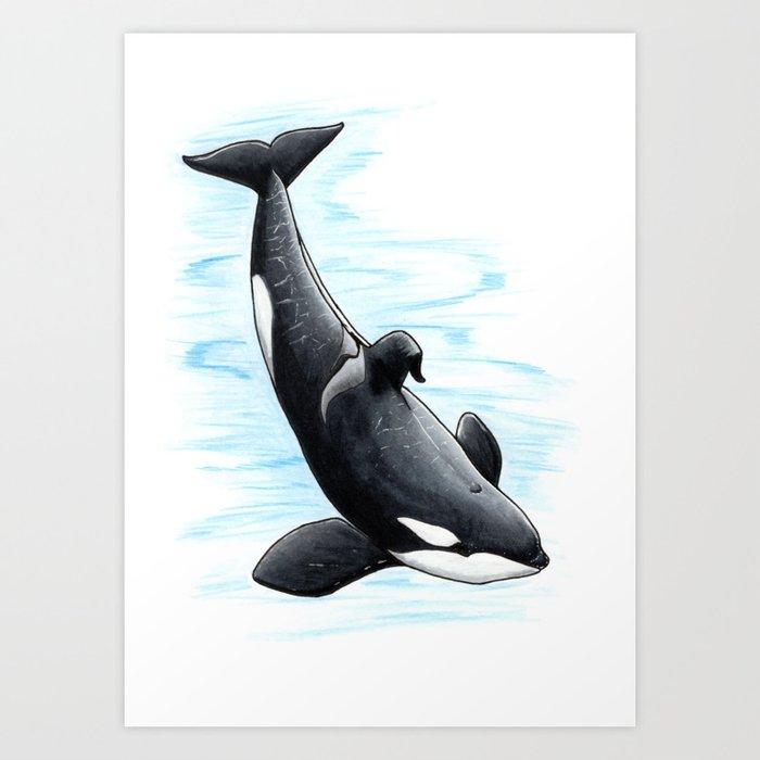 Bingo - Draw Every Captive Orca Project nr. 2 Kunstdrucke