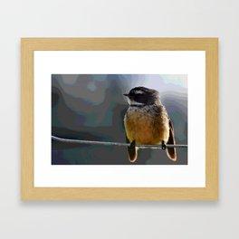 Fantail in Winter Framed Art Print