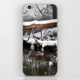 Winter's Light iPhone Skin